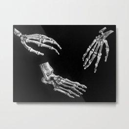 Study of Anatomy Metal Print