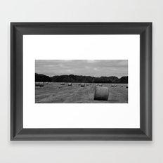 Hay Hay Framed Art Print