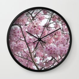 Cherry Blossom Trees. Pink flowers Wall Clock