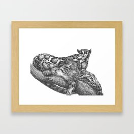 Clouded Leopard Double Image Framed Art Print