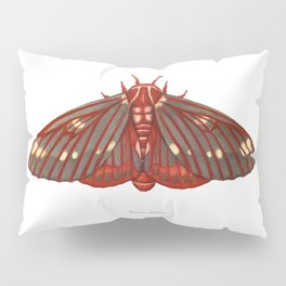 Regal Moth Pillow Sham