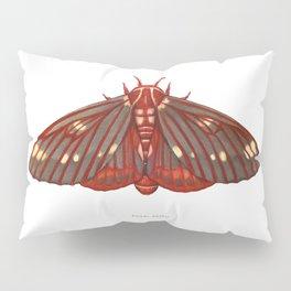 Regal Moth Pillow Sham