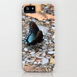 Red-spotted Purple Admiral iPhone Case