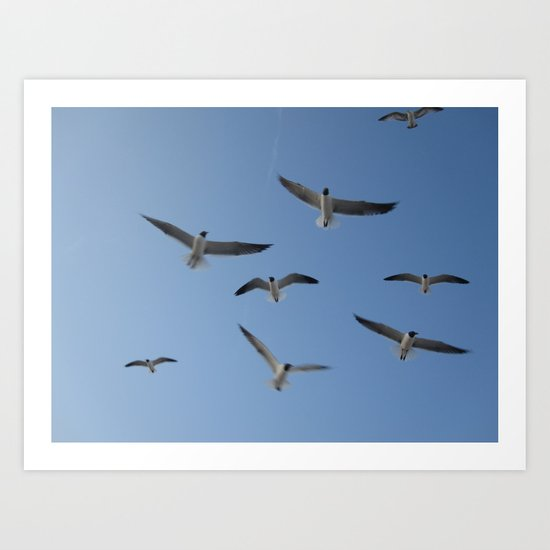 Flying high again Art Print