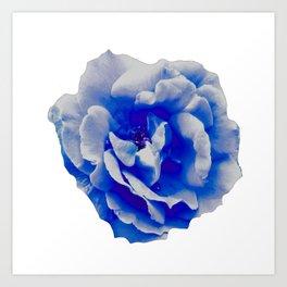 Blue Rose Art Print