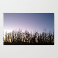 Naked in the Light Canvas Print