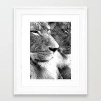 lions Framed Art Prints featuring Lions by Elizabeth Dillinger