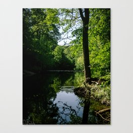 Ripples in the Creek Canvas Print