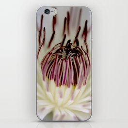A Flower Unfolding White and Purple iPhone Skin