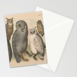 Naturalist Owls Stationery Cards