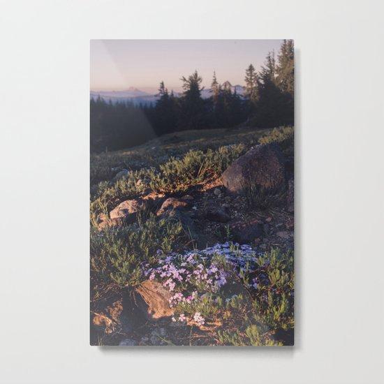 Wildflowers at Dawn Metal Print