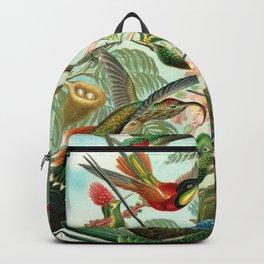 Ruby-throated Hummingbirds & Hummingbirds of the World Rainforest Garden Still Life painting Backpack