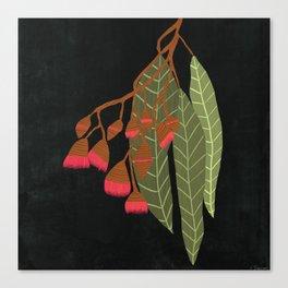 Flowering Gum - Black Canvas Print