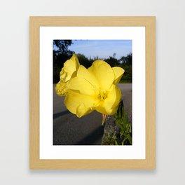 Urban Flowers Framed Art Print