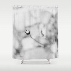 Meteorites Shower Curtain