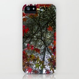 Beautiful Trees / 18 iPhone Case