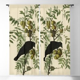 American Crow Blackout Curtain