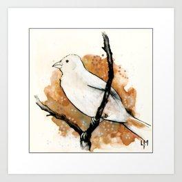 Watching the Sky Bird Art Print