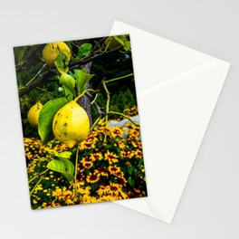 LemonTree Stationery Cards