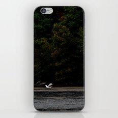 Take Flight 2 iPhone & iPod Skin