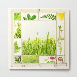 Spring window sampler Metal Print