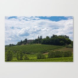 vineyards in France Canvas Print
