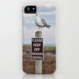 Gulls can't read iPhone Case
