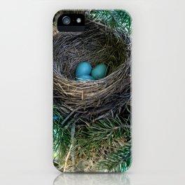 Robins Nest iPhone Case