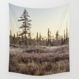 frosty Adirondack morning Wall Tapestry