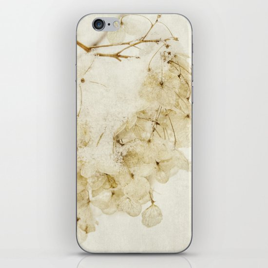 after the snow iPhone & iPod Skin