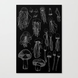 Transitioning Mushrooms (Inverted) Canvas Print