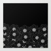 Daisy Boarder Black Canvas Print