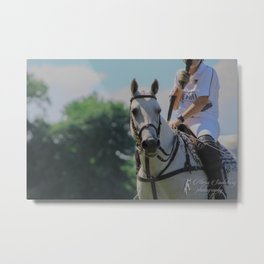 Popcorn the Polo Pony Metal Print