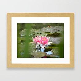 Monet's Water Lillies Framed Art Print