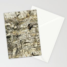 Grizzly Coming Over and Down the Ridge Stationery Cards
