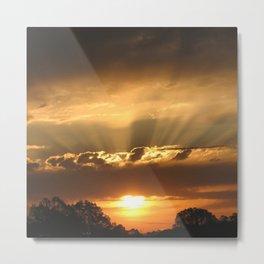 Sunshine Glow  Metal Print
