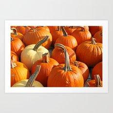 Pumpkin2 Art Print