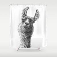 Cute Llama G135 Shower Curtain