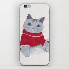 Cozy Cat iPhone & iPod Skin