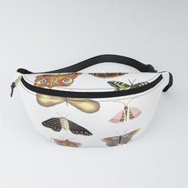 Butterflies and moths with patterns and ornaments on a white background Fanny Pack