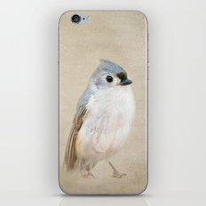 Bird Little Blue iPhone & iPod Skin