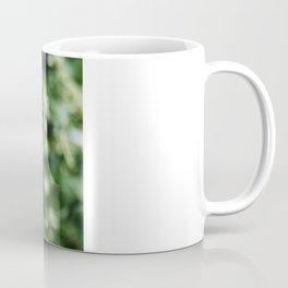 Eastern Tiger Swallowtail - Black Morph Coffee Mug