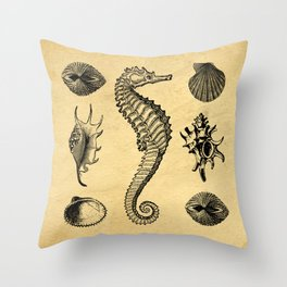 Vintage Seashells Throw Pillow