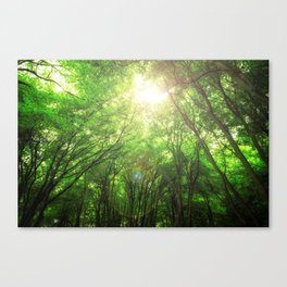 Endless Green Forest of Dreams Canvas Print