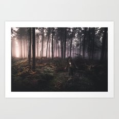 Wondering in Woods Art Print