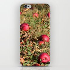 Resting Places iPhone & iPod Skin