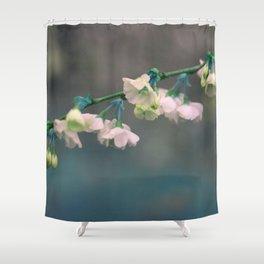 aqua c h e r r y blossoms Shower Curtain