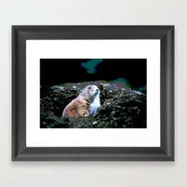 Watching for Incoming Framed Art Print