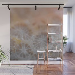 Agatized Coral Wall Mural