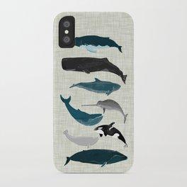 Whales and Porpoises sea life ocean animal nature animals marine biologist Andrea Lauren iPhone Case